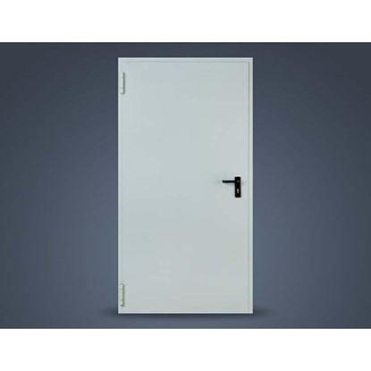 Immagine di Porta tagliafuoco, REI 60, 80x205 cm