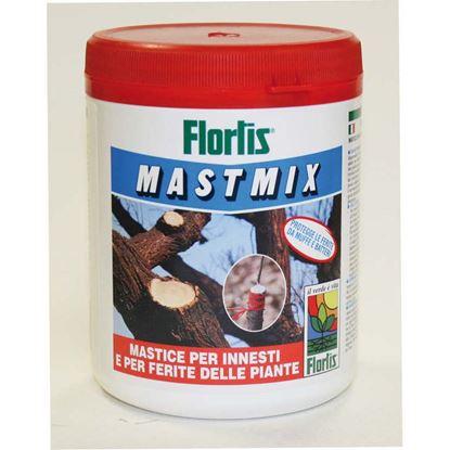 Immagine di Mastmix, 0,500 kg