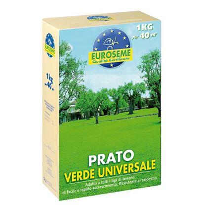 Immagine di Semi per prato, Euroseme universale, miscuglio adatto a tutti i tipi di terreno, 1 kg