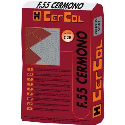 Immagine di Colla, F55, scivolamento verticale nullo, per gres porcellanato, da interni ed esterni, 25 kg, colore grigio